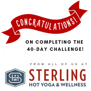 yoga challenge sterling hot yoga mobile al